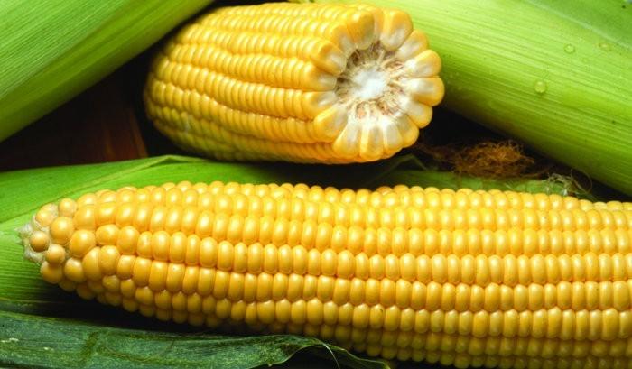 уход за листьями кукурузы